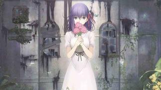"""""""Fate""""系列银幕首秀,这个IP究竟凭什么火15年"""