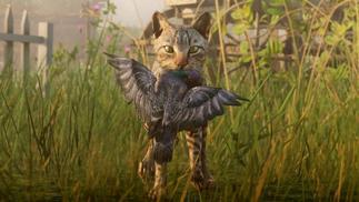 一位鸟类爱好者玩《荒野大镖客2》的乐趣