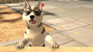 游戏里的猫猫狗狗,是开发者写给宠物们的情书