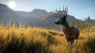《猎人:野性的呼唤》:怎样打造最美的狩猎场景