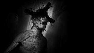 《阴暗森林》:一条惊心动魄的归家之路