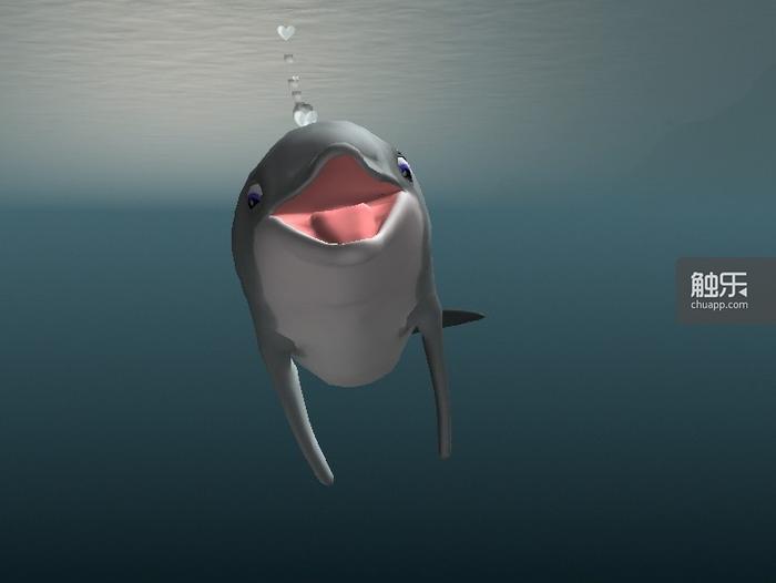 捕食成功之后,海豚会显露标志性的微笑