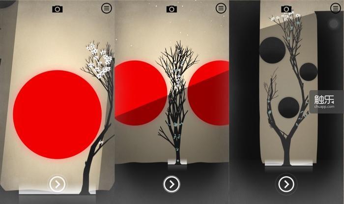 树在夹缝中求生,扭曲的形状是必须为生存付出的代价