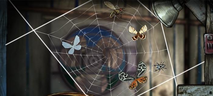 蜘蛛网的形状并没有固定的要求,但矩形永远是性价比较高的样式
