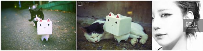 插画家和她创作的《块猫》
