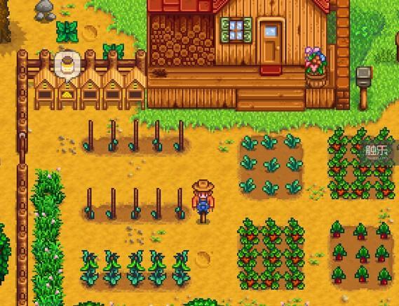 《星露谷物语》的农场